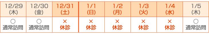 ◆◆ 2016年12月31日(土)~2017年1月4日(水)◆◆